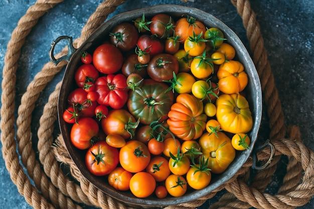 Pomidory w różnych kolorach są wyświetlane jako gradient