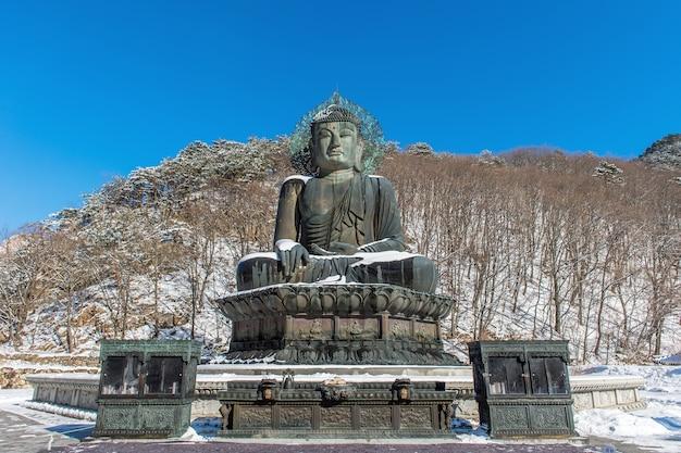 Pomnik wielkiego buddy świątyni sinheungsa w parku narodowym seoraksan zimą, korea południowa
