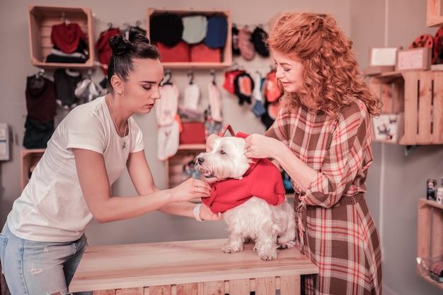Pomoc sprzedawcy. ciemnowłosa sympatyczna sprzedawczyni sklepu zoologicznego pomaga kobiecie zakładać ubrania