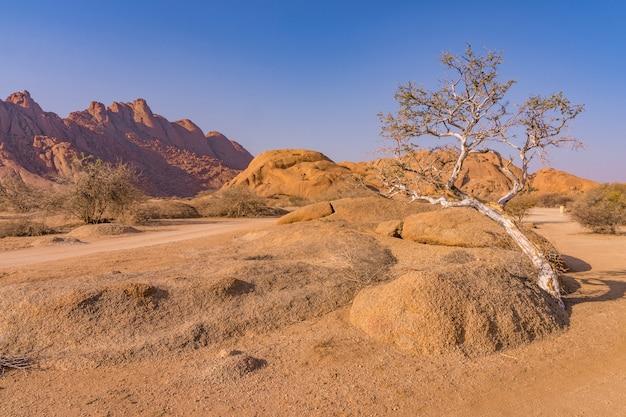 Pondoks w pobliżu góry spitzkoppe w namibii.