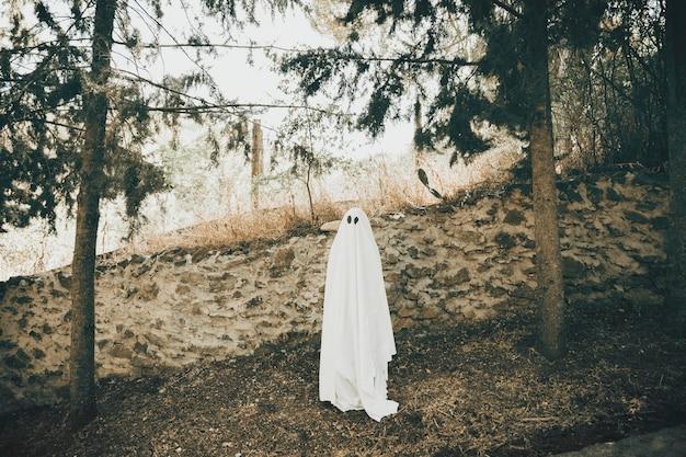 Ponura fantomowa pobliska ściana w parku