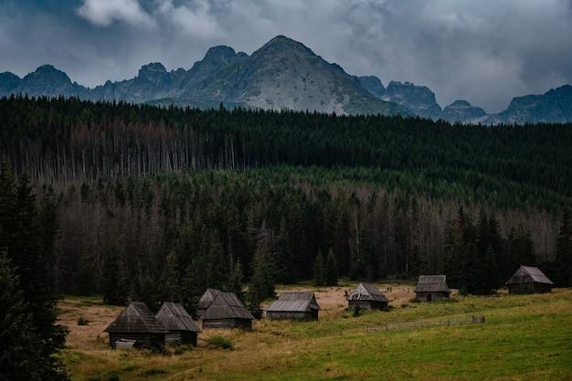 Ponura jesienna pogoda nad pięknymi drewnianymi domkami na podgórskich łąkach