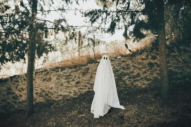 Ponury duch stoi blisko ściany w parku