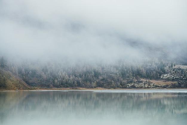Ponury jesienny krajobraz z górskim jeziorem i lasem iglastym z drzewami w szron na zboczu wzgórza w gęstej niskiej chmurze. atmosferyczny widok na żółte modrzewie z szronem na wzgórzu w gęstej mgle przy słabym oświetleniu.