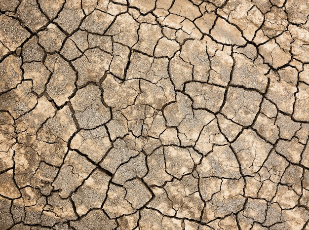 Popękana gleba dla materiału i tekstury