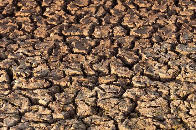 Popękana i sucha ziemia na pustyni