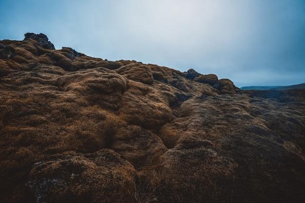 Popiół wulkaniczny i pole lawy na islandii.