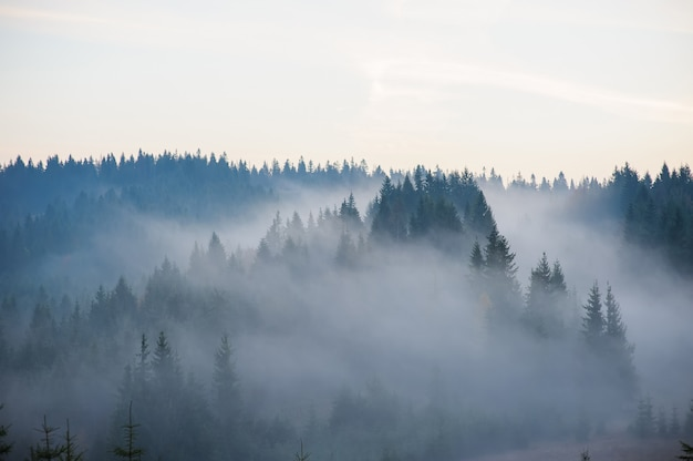 Poranek w górach