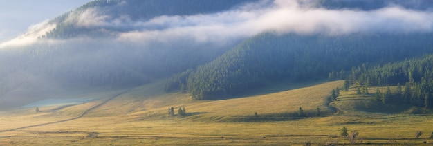Poranek w górskiej dolinie, widok panoramiczny