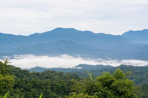 Poranna mgła na wzgórzu w punkcie widokowym panoenthung w parku narodowym kaeng krachan, prowincja phetchaburi, tajlandia