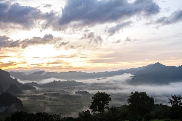 Poranna mgła pokrywa górę przed wschodem słońca w phu lang ka, phayao, tajlandia