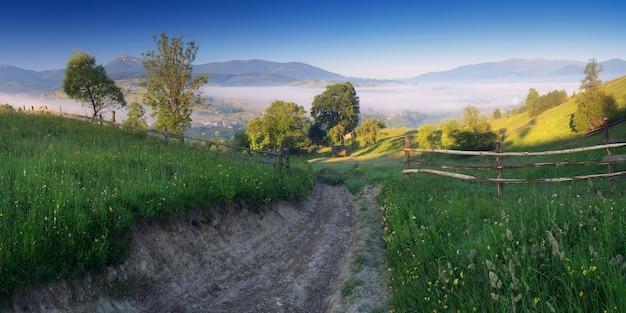 Poranny krajobraz z drogą we wsi