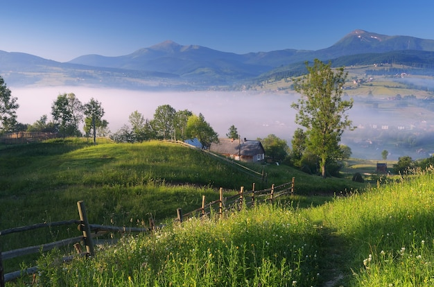 Poranny krajobraz z podwórkiem we wsi