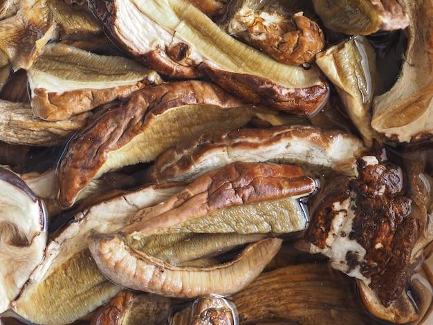 Porcini (borowik szlachetny) pokarm grzybowy