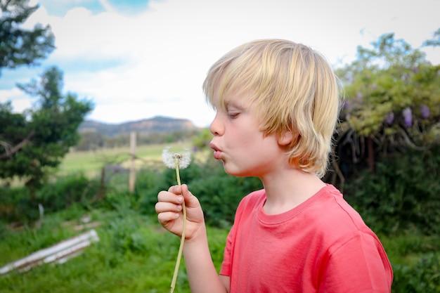 Portret blond chłopca dmuchającego mniszka lekarskiego w jasne popołudnie