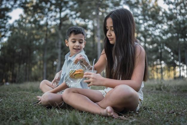 Portret boso dzieci pijących tererãƒâ© na dzień na wsi.