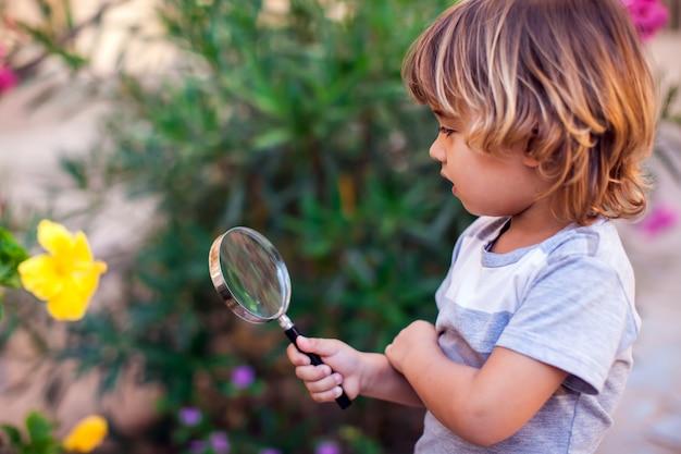 Portret chłopca dziecko gospodarstwa lupa i patrząc na kwiat. koncepcja dzieciństwa i odkrycia