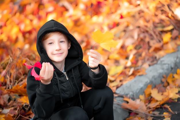 Portret chłopca, który jest w jesiennym parku na tle liści.