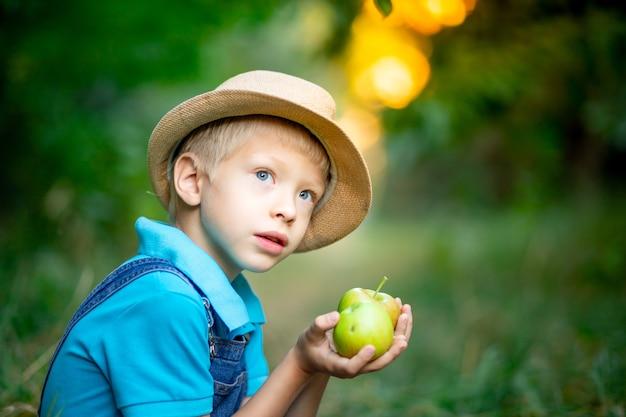 Portret chłopca sześć lat w sadzie jabłkowym i gospodarstwa jabłka