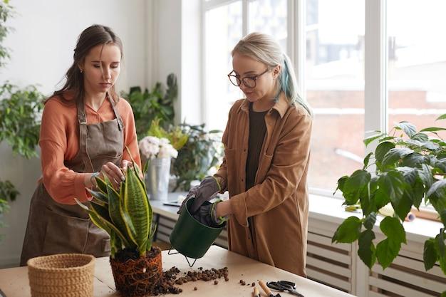 Portret dwóch kobiet kwiaciarni sadzących rośliny podczas pracy w kwiaciarni, kopia przestrzeń