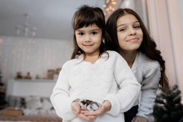Portret holownicze małe siostry pozuje w wygodnym pokoju z bożenarodzeniowym wystrojem