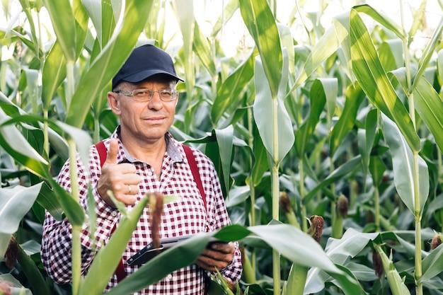 Portret kaukaskiego starszego mężczyzny stojącego w zielonym polu kukurydzy, uśmiechającego się radośnie do kamery
