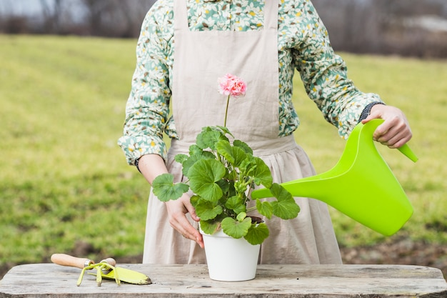 Portret kobiety ogrodnictwo