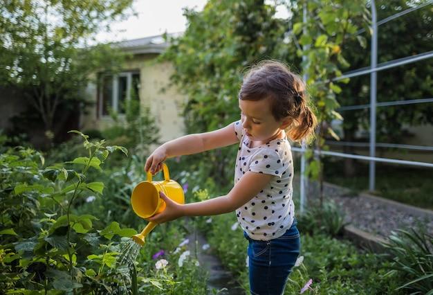 Portret małej dziewczynki podlewania asystent warzywa w ogródzie troszkę