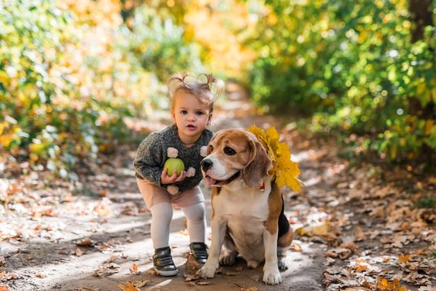 Portret małej dziewczyny mienia balowa pozycja blisko beagle psa w lesie