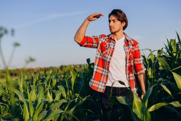 Portret młodego agronoma stojącego w polu i patrząc daleko od.