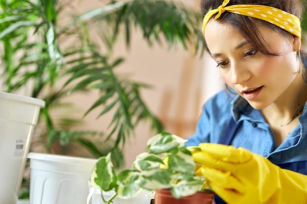 Portret młodej kobiety w gumowych rękawiczkach dbającej o rośliny przygotowujące się do przesadzania