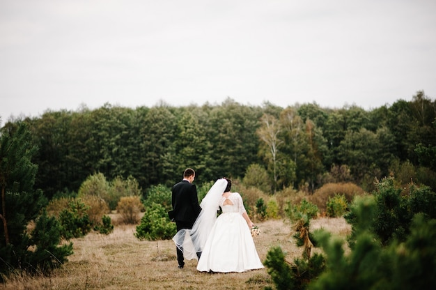 Portret młodej pary ślubu idą plecami w lesie