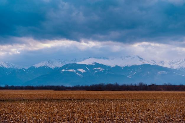Portret niesamowity krajobraz zaśnieżonych gór w rumunii
