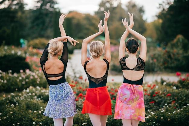 Portret od tyłu trzy pełen wdzięku baleriny pozuje w parku