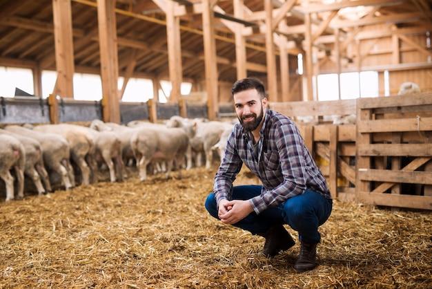 Portret odnoszącego sukcesy hodowcy bydła w stodole owiec