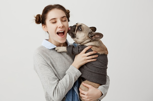 Portret pięknej kobiety zachwyconej i zachwyconej od swojego małego psa lizającego twarz. szczęśliwy wyraz twarzy gospodyni zabawy z buldog francuski ubrany w sweter. ludzkie emocje