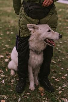 Portret psa w parku
