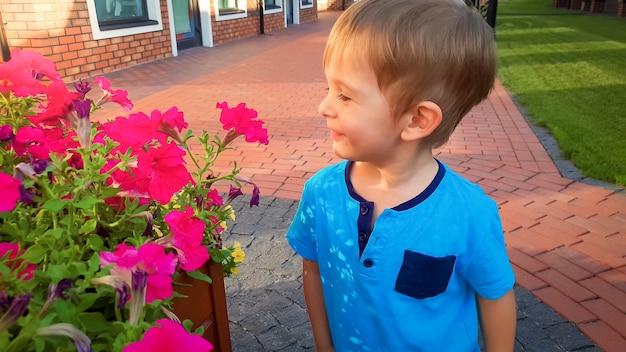 Portret ślicznego uśmiechniętego małego chłopca pachnącego pięknymi różowymi kwiatami rosnącymi w doniczce na ulicy