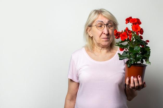 Portret starej przyjaznej kobiety w swobodnej koszulce i okularach trzyma doniczkowy kwiat i patrzy na niego na odosobnionej lekkiej ścianie. twarz emocjonalna. pojęcie pielęgnacji roślin, ogród przydomowy