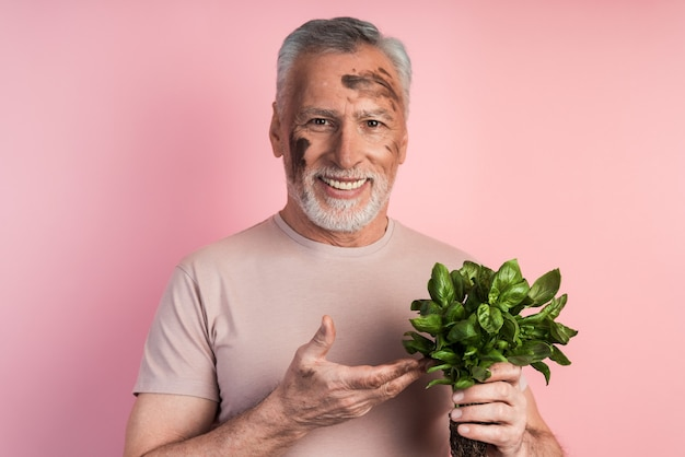 Portret strzał szczęśliwego starszego mężczyzny ubranego w zwykłe ubrania i trzymając w ręku bazylię, stojąc na izolowanej ścianie różowej