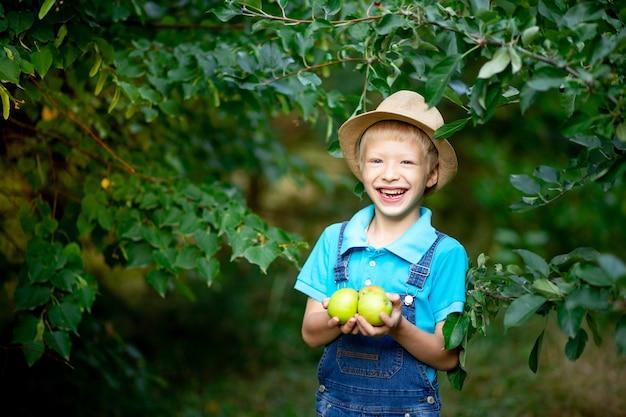 Portret szczęśliwego chłopca sześć lat w niebieskim ubraniu i kapeluszu w ogrodzie z jabłoniami i jabłkami gospodarstwa