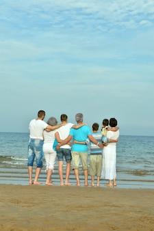Portret szczęśliwej rodziny na plaży latem, widok z tyłu
