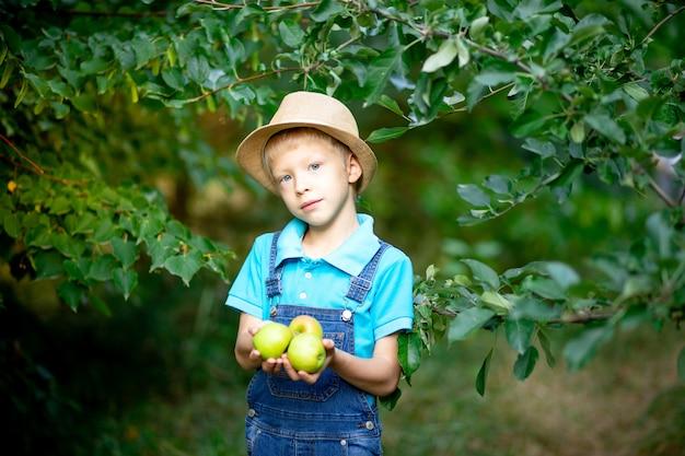 Portret sześcioletniego chłopca w niebieskim ubraniu i kapeluszu w ogrodzie z jabłoniami i jabłkami gospodarstwa