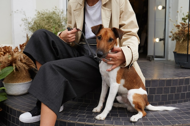 Portret uroczego psa jack russell terrier siedzi na schodach w pobliżu swojego właściciela, czuje się szczęśliwy
