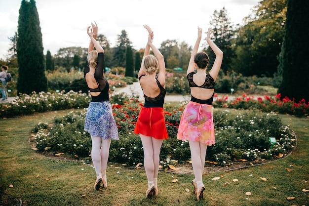 Portret z tyłu trzech wdziękowych baletnic pozuje w pięknym parku z kwiatami.
