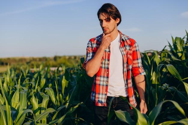 Portret zamyślony agronom stojący w polu kukurydzy i dotykając jego podbródek.