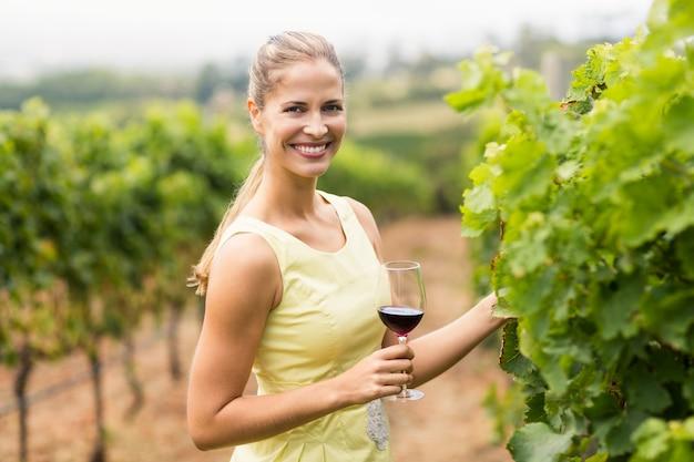 Portret żeński winiarza mienia wina szkło i sprawdzać gronowej uprawy