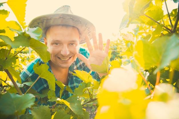 Portret zwycięskiego rolnika w słoneczny letni dzień patrzy w kamerę i uśmiecha się wśród liści winorośli