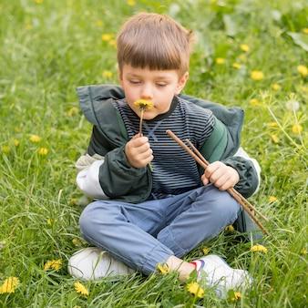 Portreta chłopiec z dandelion bawić się