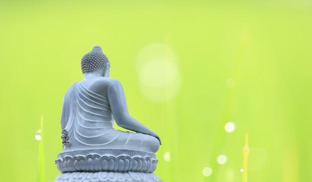 Posąg buddy biały na naturalnym rozmyciu tła